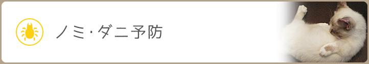 ノミ・ダニ予防